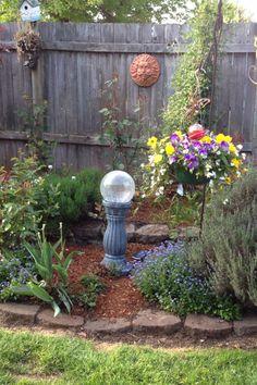 My garden. New what not.