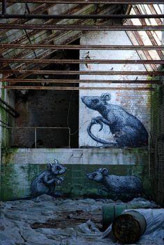 by street artist roa.
