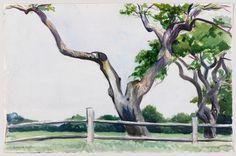 Edward Hopper, Apple Trees, 1923