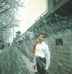 Nan Goldin  Honda brothers in cherry blossom storm, Tokyo, Japan, 1994.