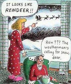 Wife husband - it looks like reindeer - rain? The weatherman's calling for snow - funny christmas cartoon - Funny Christmas Cartoons, Funny Christmas Pictures, Funny Xmas, Funny Cartoons, Christmas Humor, Funny Comics, Christmas Fun, Funny Jokes, Christmas Comics