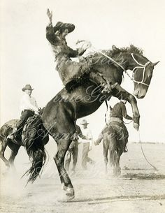 Rodeo Photo, Cowgirl on Bucking Horse Western Photo - Instant Digital Download D235A on Etsy, $3.50