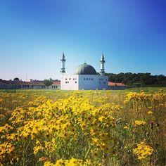 Malmö Mosque