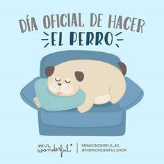 Día oficial de hacer el perro #Mr.Wonderful