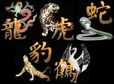 Image result for shaolin 5 animals