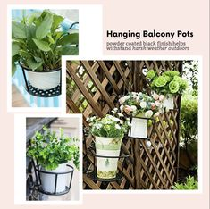 Achieve the garden scenery you've always dreamed of! 🌹💖 Elegant design💐 Beautiful at your fingertips 🤗 ideas videos Achieve the perfect garden scenery! Small Balcony Decor, Small Balcony Garden, Balcony Plants, House Plants Decor, Small Patio, Potted Plants, Wall Herb Garden Indoor, Indoor Window Planter, Pots For Plants