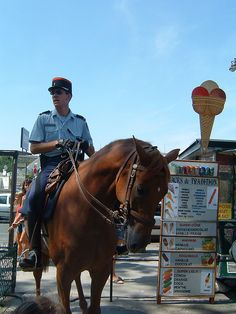 Mounted Police in Paris | Flickr - Photo Sharing!