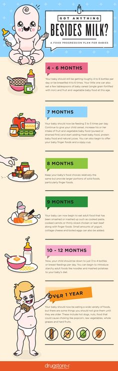 What foods should you be giving your baby at 4 months? At 7 months? Check out our guide which breaks it all down for new parents.
