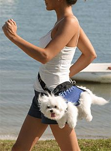 The Dog Fanny Pack - another crazy invention which combines #dogs and fanny packs into a mutation of one terrible invention. I'm wondering...who buys this stuff?