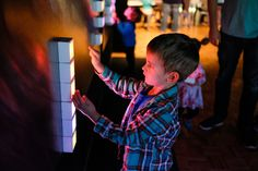 6 Exhibits for Family Fun at the Buffalo Museum of Science