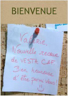 Welcome Valérie (valerie.tessier@vestaconseilfinance.fr) ! Découvrez Vesta : www.vestaconseilfinance.fr