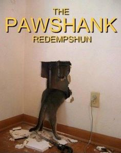 A new twist on the Shawshank redemption