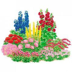 Related image Flower Bed Plants, Flower Beds, Enchanted Garden, Flowers Perennials, Garden Planning, Botanical Illustration, Garden Landscaping, Indoor Plants, Painted Rocks