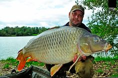 Sport Fishing, Carp Fishing, Landscape, Rigs, Nature, Sports, Wild Ones, Europe, Hs Sports