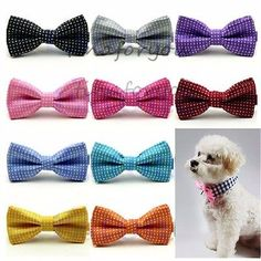 #Adjustable dog bow tie neck #necklace collar #puppy bright colour pet dickie bow,  View more on the LINK: http://www.zeppy.io/product/gb/2/201423873774/