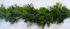 Image result for garland