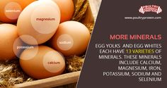 Eggs are a natural source of vitamins and minerals.  Vitamins and minerals are essential for our bodies to function healthily and to provide the nutrients for growth and repair of our bones, teeth, skin and organs.  Visit us @ www.poultryprotein.com