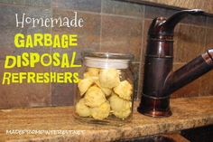 Garbage Disposal Refreshers- all natural way to remove any icky odors!