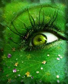 Ability to merge with plants to see out of their perspective, local and distant via the Gaia State of Oneness