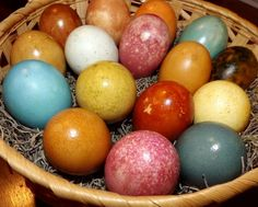Naturally died eggs