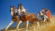Nevada Weekend Escape: Virginia City, Twain territory