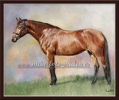 Pferd malerei nach Fotovorlage Pferdeportrait Tiermalerei Portraitzeichnung