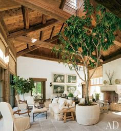 Growing out of a stone planter from La Maison Française Antiques, a large ficus tree gives the great room a forestlike air.