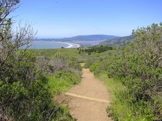PHOTOS: Escape The City Hiking 10 Of America's Best Coastal Trails