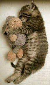 sleeping with his teddy bear