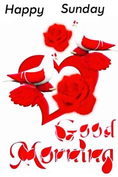 Good Morning Sunday Pictures Good Morning Sunday Pictures, Very Good Morning Images, Good Morning Beautiful Gif, Good Morning Flowers Pictures, Good Morning Friends Images, Beautiful Morning Messages, Good Morning Roses, Good Night Love Images, Good Morning Cards