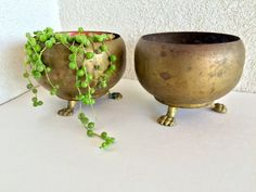Fabulous Traditional Claw Footed Brass Planters Set of Two (2) matching Brass Footed Flower Pots  Rustic French Country Traditional Country Chic Home
