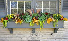 bright+interesting+different+unique+textural+fall+window+box+filler+ideas+for+st. - bright+interesting+different+unique+textural+fall+window+box+filler+ideas+for+stone+gray. Cedar Window Boxes, Fall Window Boxes, Window Box Flowers, Window Sill, Hanging Planter Boxes, Window Planter Boxes, Planter Ideas, Hanging Baskets, Fall Flower Boxes