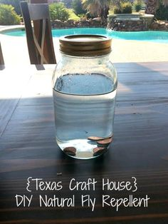 {Texas Craft House} DIY Natural Fly Repellent