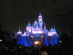 Disneyland at Christmas!