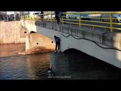 Man rescues stray dog trapped under bridge (VIDEO) » DogHeirs | Where Dogs Are Family « Keywords: Serbia, dog, bridge