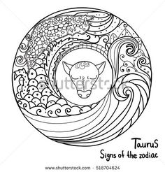Black thin lines abstract. Signs of the zodiac. Horoscope hand drawing. Taurus symbol. Coloring page book for kids and adults. Vector isolated template. Winter round frame. Astrology.