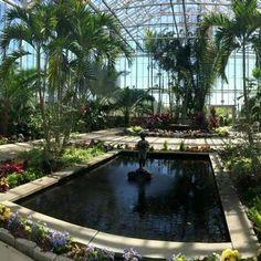 The Botanical Center At Roger Williams Park