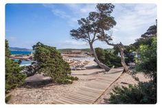 Cala Bassa / #Eivissa #ibizaplayas