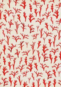 """lea woodpecker: """" Coral pattern. """""""