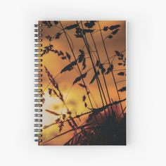 Bring the calming, warm morning sun with you with this georgous Spiral Notebook. Shine all day! Morning Sun, Other Accessories, Calming, Travel Mug, Spiral, Bring It On, Notebook, Warm, Design