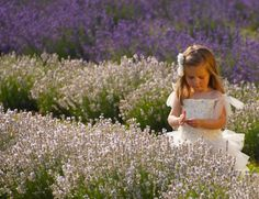 Princess and The Lavender