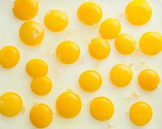 Eggs eggs eggs