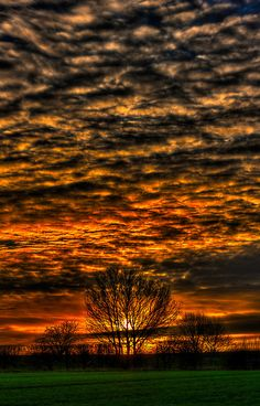 Sunset over Willow Park,   Pontefract, England.    photo by Nigel Buggerfield