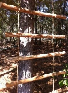 The Homestead Survival | Learn Knot Tying and Lashing to Build a Sturdy Ladder | Primitive Skills & Homesteading http://thehomesteadsurvival.com