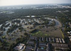 Hurricane Harvey Brought to us, more than devastation, and it didn't take long to see it! Global Warming Climate Change, Flood Zone, Call To Action, Built Environment, How To Level Ground, Natural Disasters, Aerial View, Puerto Rico, Paris Skyline