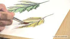 Caran d' Ache Pablo Colored Pencils