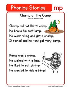 This Reading Comprehension Worksheet - Champ at the Camp is for teaching reading comprehension. Use this reading comprehension story to teach reading comprehension.