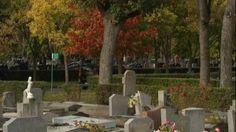 Toussaint : les coulisses de la logistique funéraire