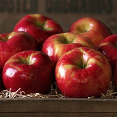 Experience a Honeycrisp Apple from The Fruit Company – from your first bite it's amazingly crunchy, incredibly juicy and sensationally sweet. Gourmet Gift Baskets, Gourmet Gifts, Gourmet Recipes, Apple Fruit, Red Apple, Apple Plant, Fruit Company, Honeycrisp Apples, Apple Harvest