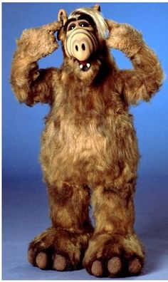"""ALF I was obsessed with this guy! """"Ha- I kill me! Heeeeere Lucky lucky lucky!"""""""